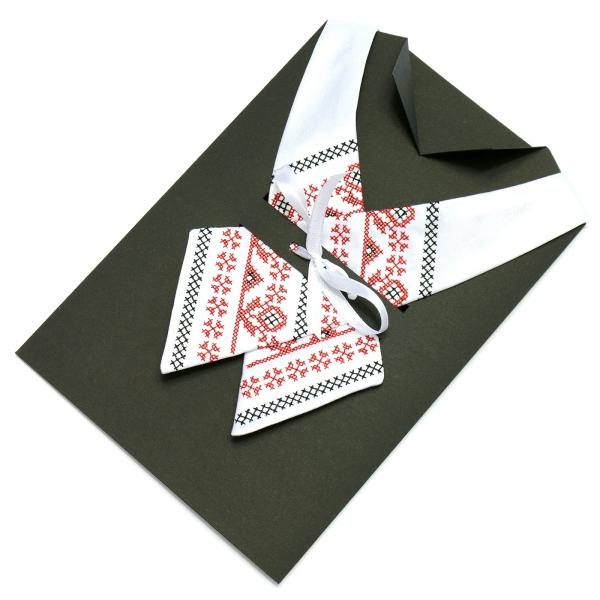 Вышитый крос-галстук Берест